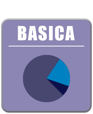 icon manutencao basic